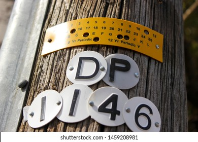 July 2019, Swansea, UK. Wooden Power/telegraph,telecommunications pole, engraved plastic pole tags, visibility strips.