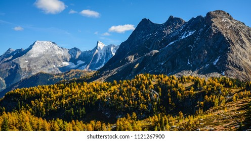 Jumbo Pass, British Columbia, Canada in Fall with Golden Larch. Purcell Mountain Landscape.