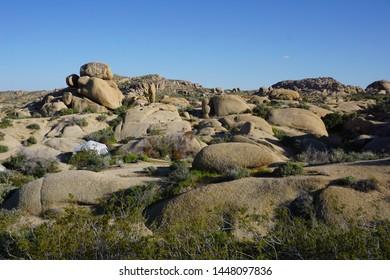 Jumbo Rocks Campground in Joshua Tree National Park
