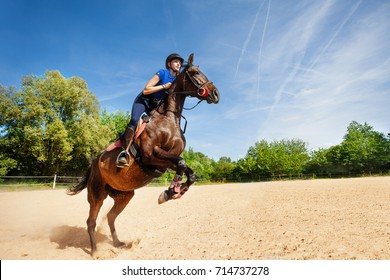 Jumping horse and rider practicing at racetrack