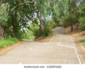 A junction in a bike path, one path heading up and the other down, in Richmond along the banks of the Yarra River in Melbourne, Australia.