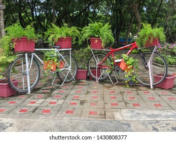 June 15, 2019-Davao City Philippines : Two red bikes with plants stationed at the people's park in Davao City for picture taking