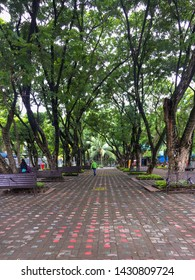June 15, 2019-Davao City Philippines: A long stretched pathway with colorful painted concrete pavement and tall trees both sides