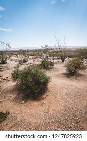June 20, 2017 - Tombstone, Arizona, USA. Boothill Graveyard is an old historic cemetery and tourist attraction at the edge of town.