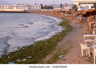 June 21, 2019 Tunis, Tunisia: Junk that people throw on the beach and in the water the garbage lies in the African city of Tunis, Tunisia.