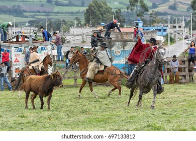 June 3, 2017 Machachi, Ecuador: cowboys roping a bull in a rural rodeo in the Andes region