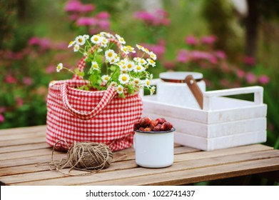 june or july garden scene with fresh picked organic wild strawberry and chamomile flowers on wooden table outdoor. Summertime still life, healthy country living on farm concept