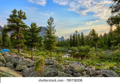 June warm morning in Siberian forest. Ergaki Nature Park. Krasnoyarsk region. Russia