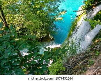 jungel waterfall tree Lake