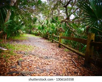 Jungel Way National Park