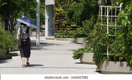 """""""Jung-gu,, Seoul/Korea - 05 29 2019 : Seoullo 7017. a lady with an umbrella It was very hot on this day."""