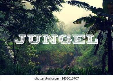 Jungle background with jungel font