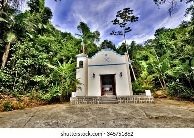 jungle church