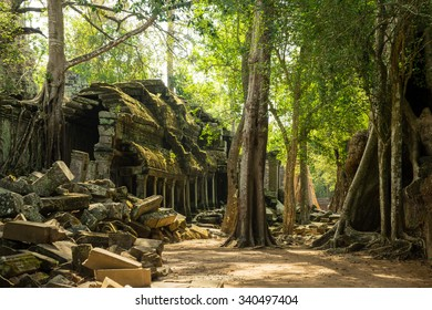 The jungle hides the ancient ruins of Ta Prohm in the Angkor National Park, Cambodia.