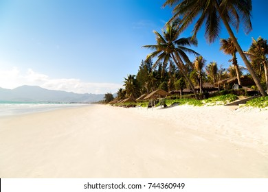 jungle island sea landscape with Palm and tropical bech white sand landscape, Vietnam Nhatrang beach Doc let