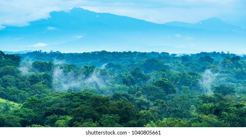 Jungle landscape scenic with mountains on the horizon in Chiapas, Mexico