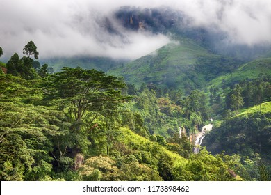 jungle landscape with trees, waterfall, hills and mountains
