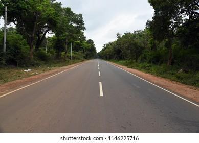 Jungle road,Sri Lanka