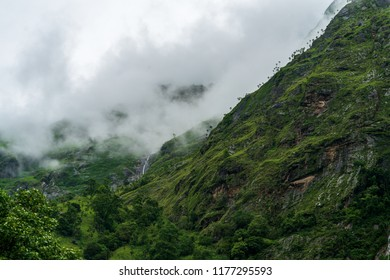 Jungle surrounded by clouds