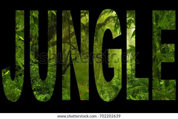 Jungle text