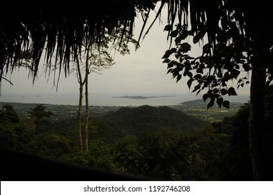 jungle. View of the island and the coast.