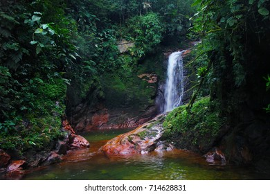 Jungle Waterfall in Joinville Brazil