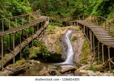 Jungle waterfall. Tropical rainforest in Sochi Russia. Relict forest in national park.