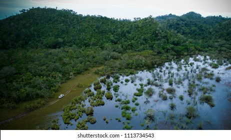 Jungle wetlands wilderness from helicopter