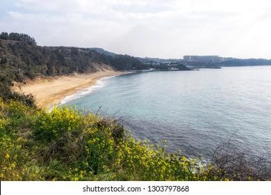 Jungmun Saekdal beach view a famous beach in Jungmun tourism complex in Seogwipo, Jeju Island, South Korea
