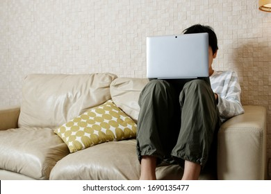 Junior high school boy using a computer on the sofa in the living room