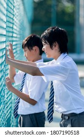 Junior high school students peeking through the rooftop fence