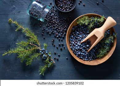Juniper berries on and beside wooden bowl. Fresh juniper berries and branches.
