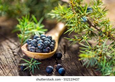 Juniper berries on old wooden table