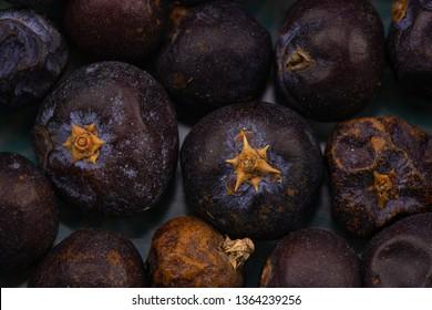 juniper berry  detail background healing herbs
