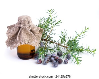 Juniper branch and berries with pharmaceutical bottles. Isolated.