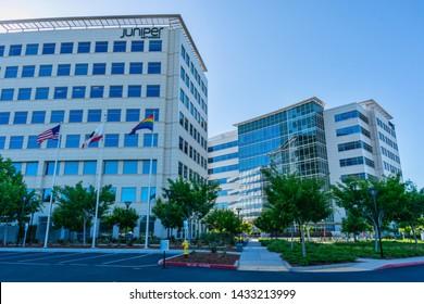 California Juniper Images, Stock Photos & Vectors | Shutterstock