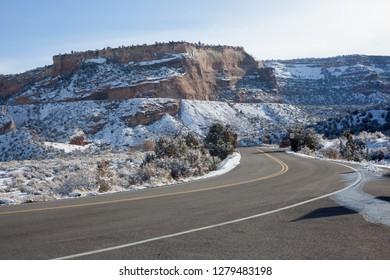 A juniper, part of the PJ or pinyon juniper biome, frames cliffs of the Colorado national monument after a winter storm