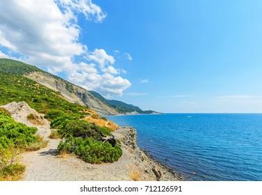 Juniper  reserve on the Black Sea coast near Big Utrish.