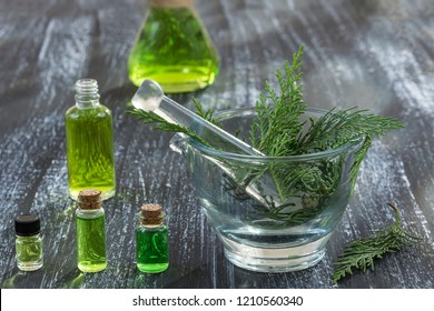 Juniper, twig with cones, close up,Bottle of cypress tincture, infusion, oil