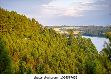 Juniper valley in Kaunas lagoon regional park, Arlaviskes, Kaunas county, Lithuania. Valley is decorated with a variety of plants in various colours, shapes, smells. Some of them are extremely rare.