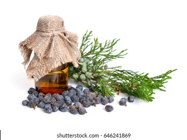 Juniperus sabina with green and ripe Cones (berries). Essential oil in the pharmaceutical bottle. Isolated on white.