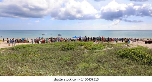 JUNO BEACH, FL/USA - JUNE 19, 2019:  The loggerhead Marinelife Center rehabilitates sea turtles.  A male loggerhead turtle was released today.  A crowd gathers to celebrate the event.