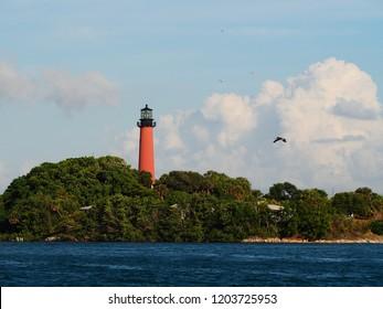 Jupiter Lighthouse and Sea Birds