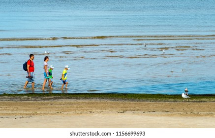Jurmala, Latvia - August 14, 2018: Jurmala is a famous tourist resort in Latvia and Baltic region, EC, Europe. Photo shows halthy and sport life style and family activity in Jurmala