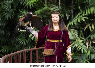 Jurong Bird Park, Singapore - SEP 14 : Heat of the hunt at Jurong Bird Park's Kings of the Skies show that leave you in awe and amazement on September 14, 2014 in Singapore.