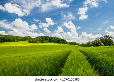 Just a perfect day. Pure fresh spring green color, blue skies with some white clouds. Very peaceful rural scene.