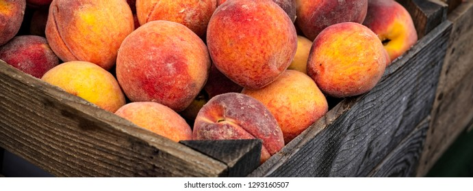 Just picked rippened peaches in wooden crates ready to eat.