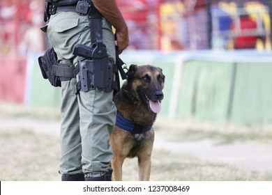 A K9 police officer with his dog   In Recife- Pernambuco -Brazil
