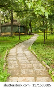 Kabini Wildlife Sanctuary,Karnataka, India - Aug 17: Walkways inside  Kabini River lodge in monsoon season on Aug 07 -2018 in Kabini Wildlife Sanctuary, Karnataka, India