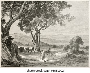 Kabylie, Algeria: the route to Fort Napoleon. Created by Dohusset, published on Le Tour Du Monde, Paris, 1867